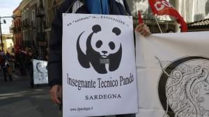 itp-panda